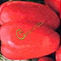 Семена томатов Еллоу Стоффер розовый - 20 семян - высокорослый, перцевидный, до 250 г, хорош для фарширования