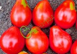 Семена томатов Инжир розовый - 1 уп.-20 семян - высокорослый, до 120 г, грушевидный, малосемянный, усыпной. Семенаград - семена почтой