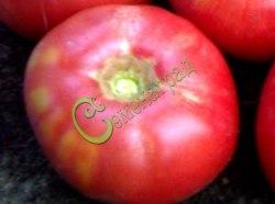 Семена томатов Любительский розовый - 1 уп.-20 семян - высокорослый, до 800 г, красота и урожайность. Семенаград - семена почтой