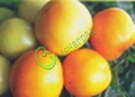 Семена томатов Персик - 20 семян - среднерослый, 100 г, жёлтый, опушённый
