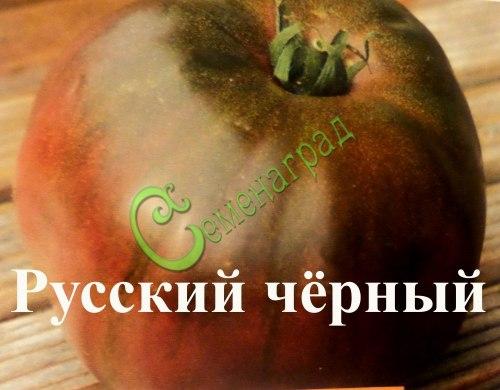 Семена томатов Русский черный, выведен во Франции - высокорослый, до 250 г, цвета темного шоколада, похож на бифштекс, сладкий, мясистый, очень сочный и без кислотности. Семенаград - семена почтой