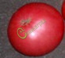 Семена томатов Сибирский великан - 20 семян - высокорослый, розовый, мощный, до 1 кг