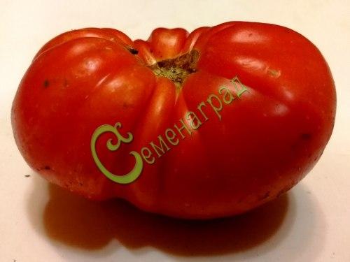 Семена томатов Супер Марманде - высокорослый, до 300 г, просто прелесть. Семенаград - семена почтой