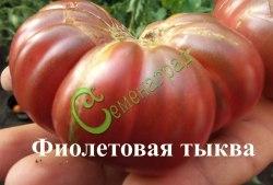 Семена томатов Фиолетовая тыква - 1 уп.-20 семян, выведен во Франции - высокорослый, до 180 г, мякоть плодов плотная, сладкая, очень ароматная. Семенаград - семена почтой