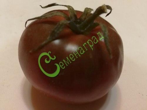 Семена томатов Чёрный айсберг - 20 семян - высокорослый, шоколадного цвета, сладкий с ароматом, до 220 г