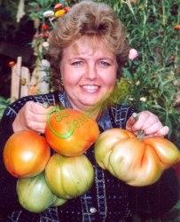 Семена томатов 700-граммовые - 1 уп.-20 семян - высокорослый, овальный, сердцевидный, с кончиком, крупный, эксклюзив, у этого сорта семена мелкие, сажать неглубоко (0,5 см), температура почвы не ниже +25 С Семенаград - семена почтой