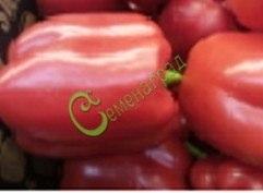 Семена сладкого перца Голландский красный, 1 уп.-10 семян - цилиндреский, крупный. Семенаград - семена почтой