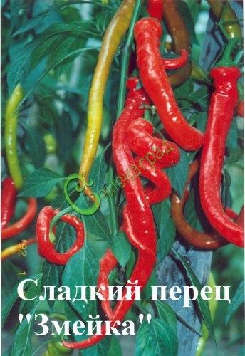 Семена почтой сладкий перец Змейка - 10 семян - закрученные во множестве, очень красивые, длинные, сладкие плоды-змейки