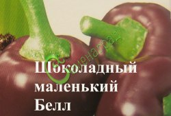 Семена сладкого перца Шоколадный маленький Белл, 1 уп.-10 семян, выведен во Франции - миниатюрные круглые перцы от 3,5 до 5 см в диаметре шоколадного цвета с темно-красной сладкой мякотью и приятным фруктовым ароматом. Семенаград - семена почтой