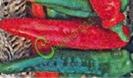 Семена острого перца Украинский - 1 уп.-10 семян - красный, крупный, удлинённый (до 20 см). Семенаград - семена почтой