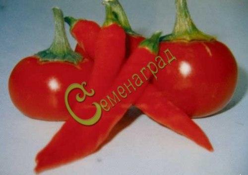 Семена острого перца Черешневидный - 1 уп.-10 семян - необычный, крупнее черешни. Семенаград - семена почтой