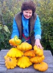 Семена патиссона Патиссон «Солнечная вспышка», 1 уп.-4 семени, выведен в США - необыкновенно вкусный, очень богатый каротином, желтый, как солнышко. Семенаград - семена почтой