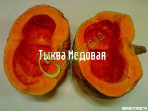 Семена тыквы «Медовая» - 4 семени - относится к виду крупноплодных тыкв, очень сладкий любительский сорт