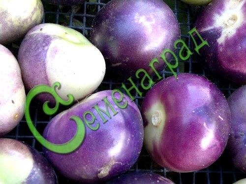 Семена физалиса Физалис овощной фиолетовый - 1 уп.-30 семян - ранний сорт, плоды от 60 до 100 г, для консервирования, варенья, цукатов. Идеально подходит для приготовления рататуя. Семенаград - семена почтой