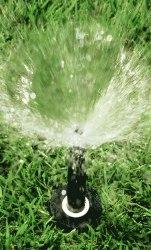 Распылитель 1804 RainBird высота штока 10,0 см