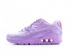 Air Max 90 Desert Pack Paris - Macarons Nike