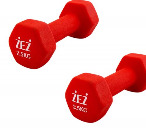Гантель виниловая 2,5 kg-N красная