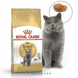 Сухой корм Royal Canin British Shorthair НА РАЗВЕС 100г