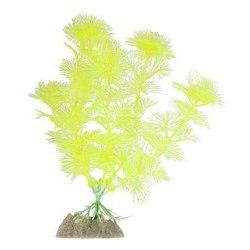 Растение GloFish Желтое М