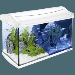 Аквариумный комплект Tetra AquaArt LED Aquarium-Set white 60L
