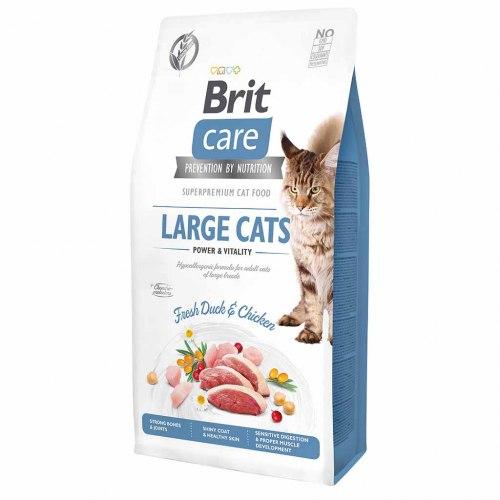 Сухой корм Brit 2кг Care Cat GF Large cats Power & Vitality
