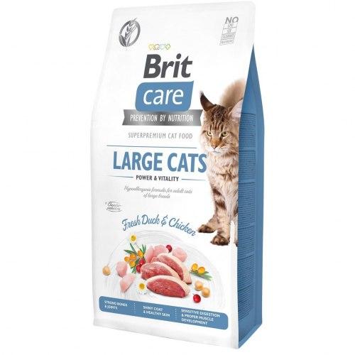 Сухой корм Brit 7кг Care Cat GF Large cats Power & Vitality