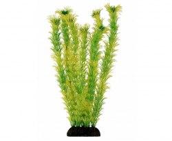 "Растение Laguna ""Амбулия"" зеленая, 300мм, (пакет)"