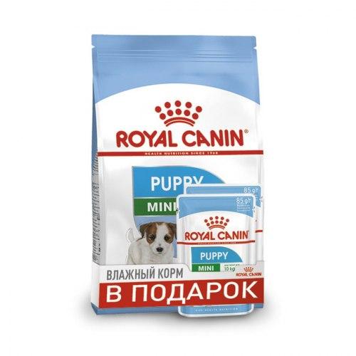 Сухой корм Royal Canin X-SMALL PUPPY - 800 г + ПАУЧ В ПОДАРОК