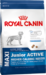 Сухой корм Royal Canin MAXI JUNIOR ACTIVE