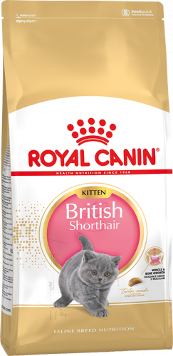 Сухой корм Royal Canin KITTEN BRITISH SHORTHAIR - 10 кг