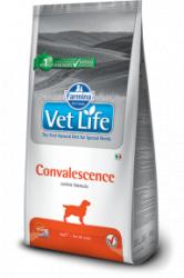 Сухой корм Vet Life Dog CONVALESCENCE 2 кг