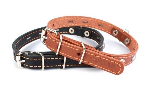 Ошейник В НАЛИЧИИ Collar одинарный (ш 12 мм, д 24-32 см), черный, коричневый