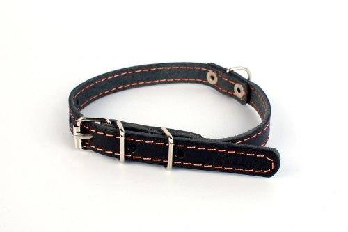 Ошейник В НАЛИЧИИ Collar одинарный (ш 20 мм, д 32-40 см), черный