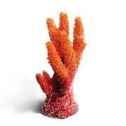 Коралл искусственный В НАЛИЧИИ Laguna Синулярия, 30*36*67мм