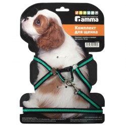 Комплект В НАЛИЧИИ Gamma шлейка и поводок для щенка из капрона, 280-340*85мм, 10*1300мм