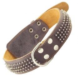 Ошейник Gamma кожаный двойной с кольцом и украшением Еж, 45мм*770мм