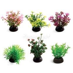 Набор растений Laguna 50мм, 6шт
