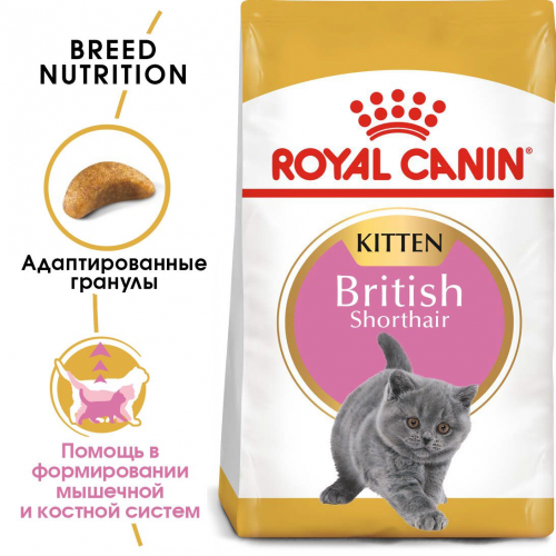 Сухой корм Royal Canin KITTEN BRITISH SHORTHAIR - 2 кг