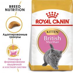 Сухой корм Royal Canin KITTEN BRITISH SHORTHAIR - 10 кг