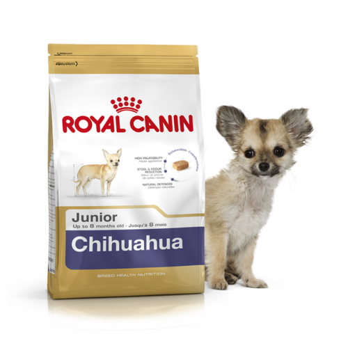 Сухой корм Royal Canin CHIHUAHUA JUNIOR - 0,5 кг