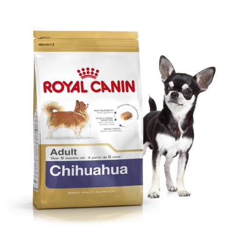 Сухой корм Royal Canin CHIHUAHUA ADULT - 0,5 кг