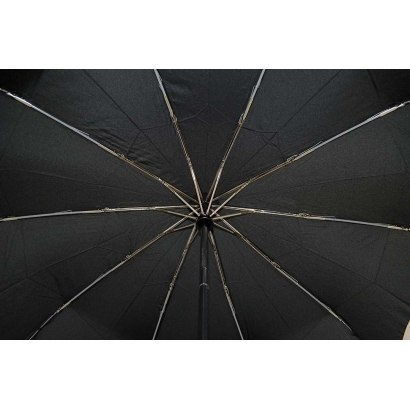 Зонт женский автомат (10 спиц) Три слона 110-5